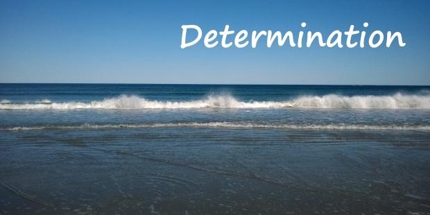 40-determination